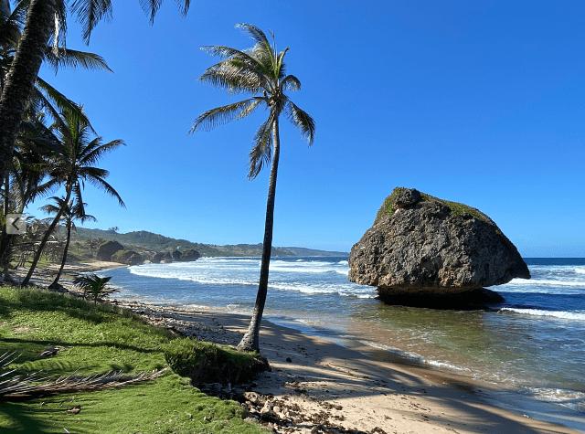 barbados beach scene
